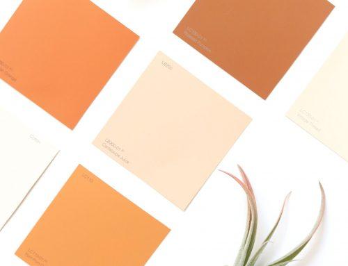 Il colore: usarlo bene per raccontare una storia e strumenti utili per creare palette colore che funzionano